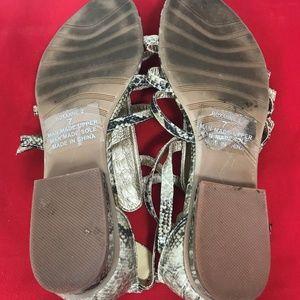 Coconuts by Matisse Shoes - Coconuts by Matisse Snakeskin Gladiator Sandals  7